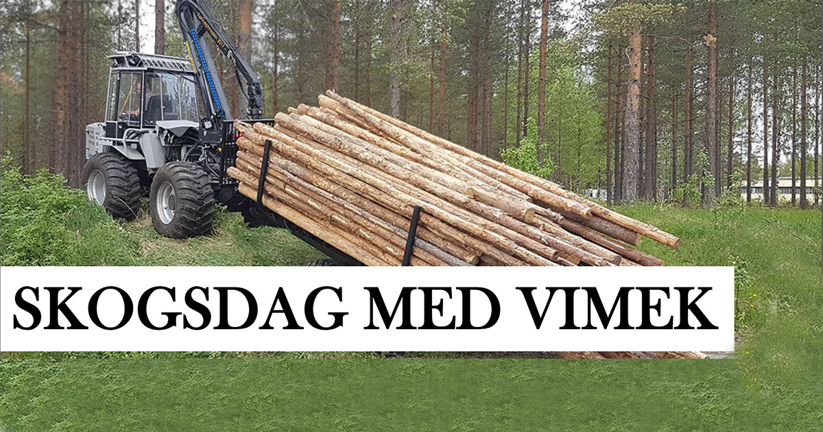 Vimek live show in forest 12th and 15th March 2019.